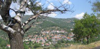 kontovazaina1.e-gortynia.gr